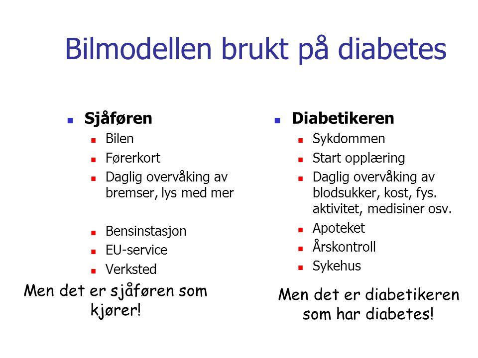 Bilmodellen brukt på diabetes Sjåføren Bilen Førerkort Daglig overvåking av bremser, lys med mer Bensinstasjon EU-service Verksted Diabetikeren Sykdom
