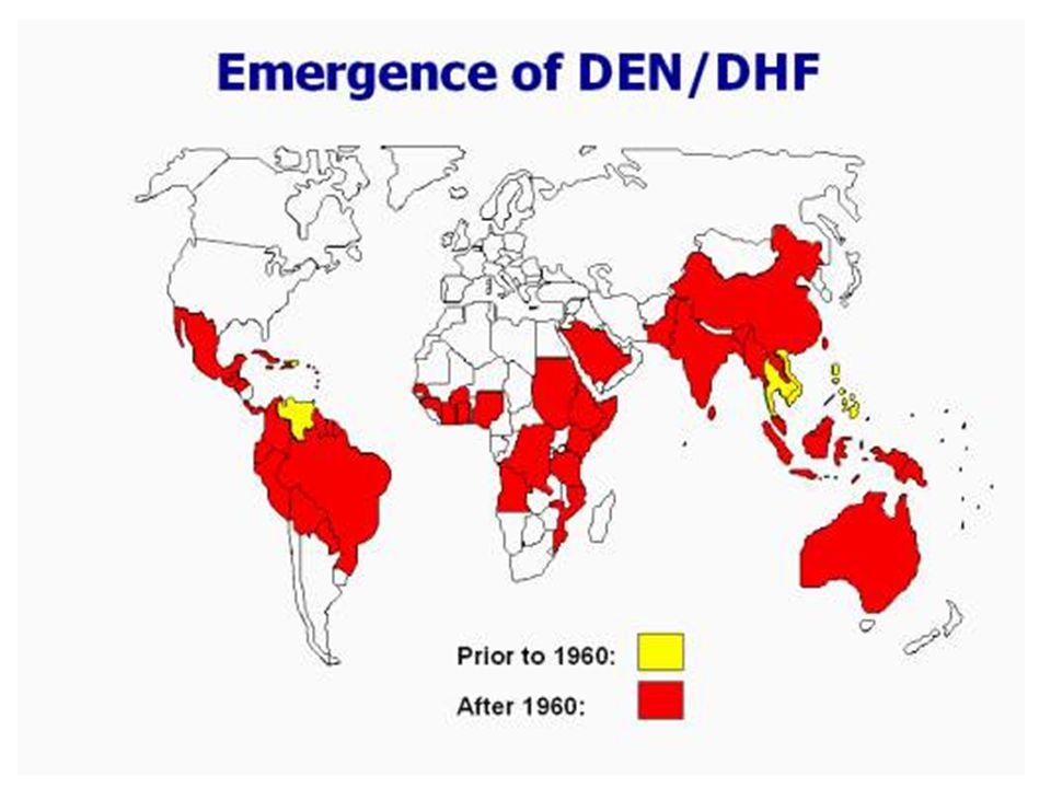 Import til Europa Sjelden importsykdom Noen få (< 5?) tilfeller diagnostisert i Norge –Fra Filippinene,Thailand, Indonesia –Meldepliktig