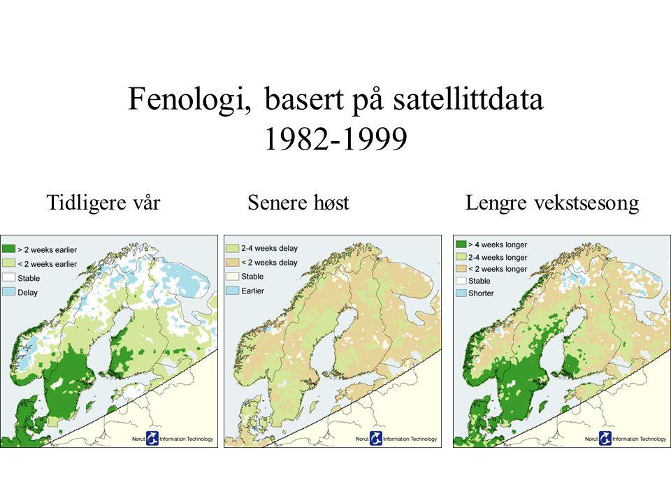 Fenologi, basert på satellittdata 1982-1999 Tidligere vårSenere høst Lengre vekstsesong