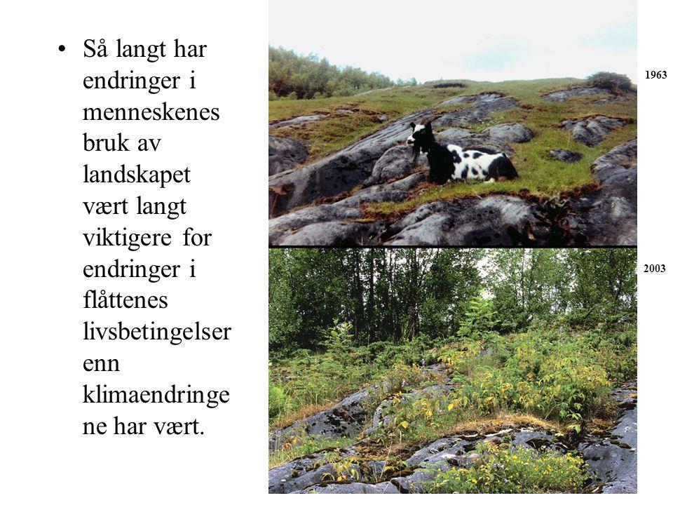 Så langt har endringer i menneskenes bruk av landskapet vært langt viktigere for endringer i flåttenes livsbetingelser enn klimaendringe ne har vært.