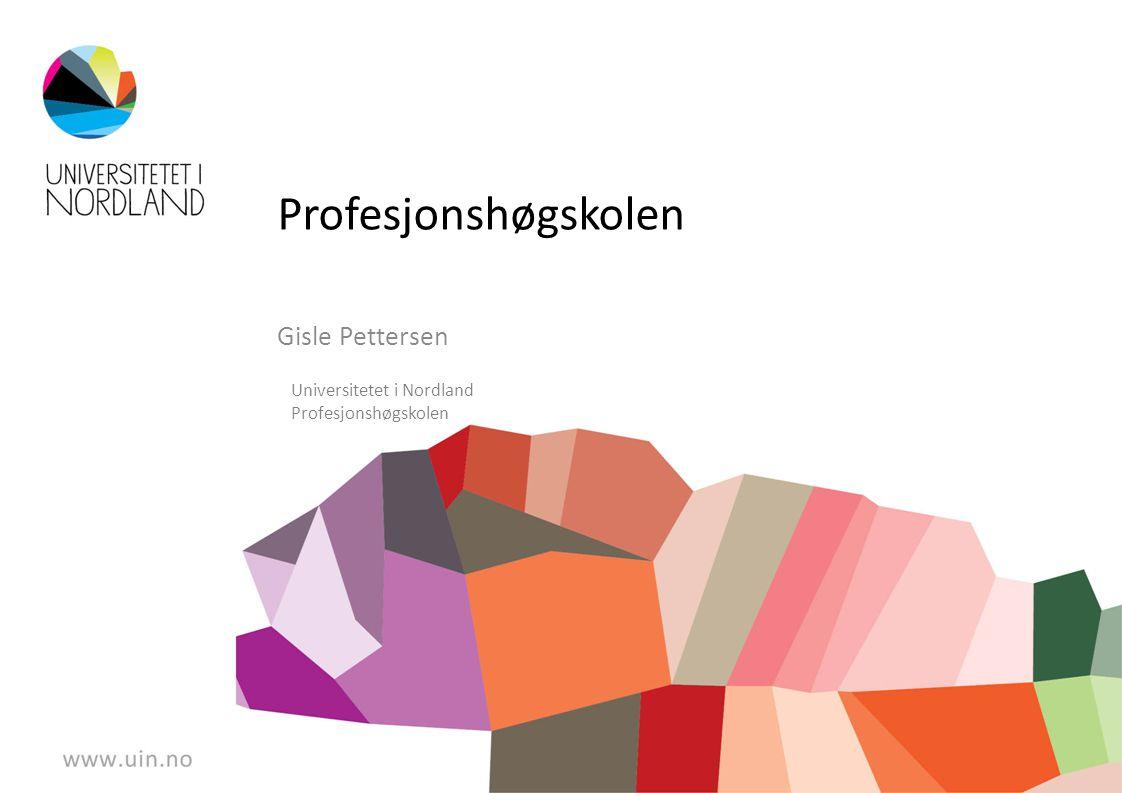 Profesjonshøgskolen Gisle Pettersen Universitetet i Nordland Profesjonshøgskolen