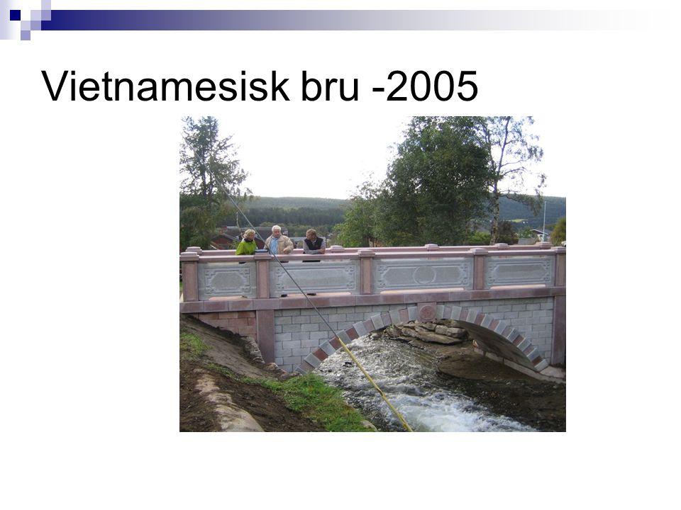 Vietnamesisk bru -2005