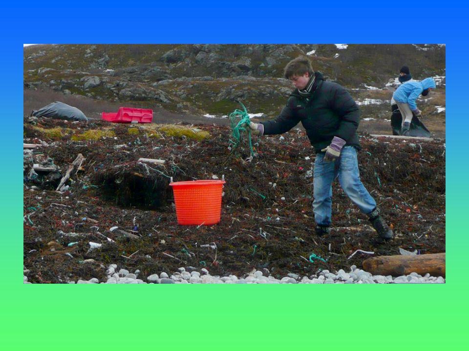 Resultat etter 3 ryddinger: 14090 søppelbiter