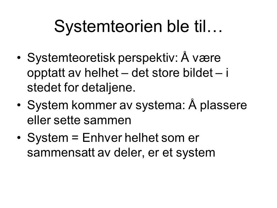 Systemteorien ble til… Systemteoretisk perspektiv: Å være opptatt av helhet – det store bildet – i stedet for detaljene.