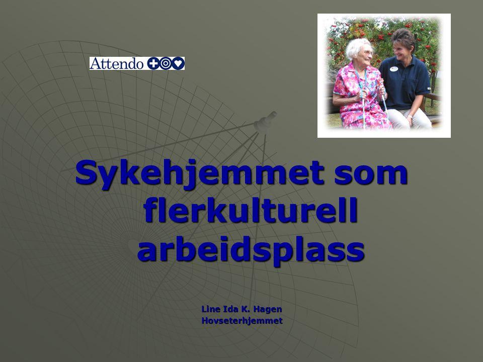 Sykehjemmet som flerkulturell arbeidsplass Line Ida K. Hagen Hovseterhjemmet