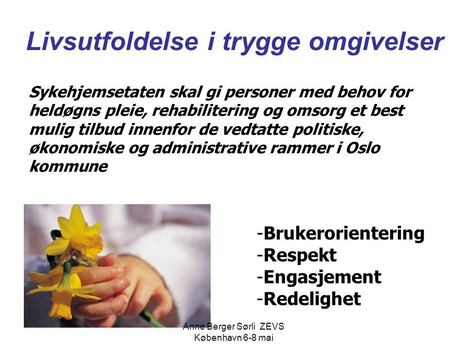 Livsutfoldelse i trygge omgivelser Sykehjemsetaten skal gi personer med behov for heldøgns pleie, rehabilitering og omsorg et best mulig tilbud innenf