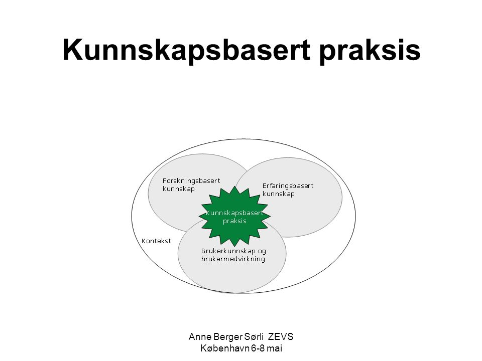 Kunnskapsbasert praksis Anne Berger Sørli ZEVS København 6-8 mai