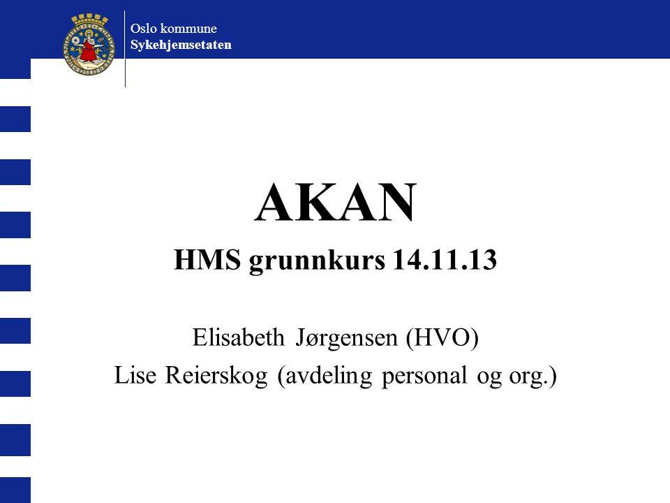 Oslo kommune Sykehjemsetaten AKAN HMS grunnkurs 14.11.13 Elisabeth Jørgensen (HVO) Lise Reierskog (avdeling personal og org.)