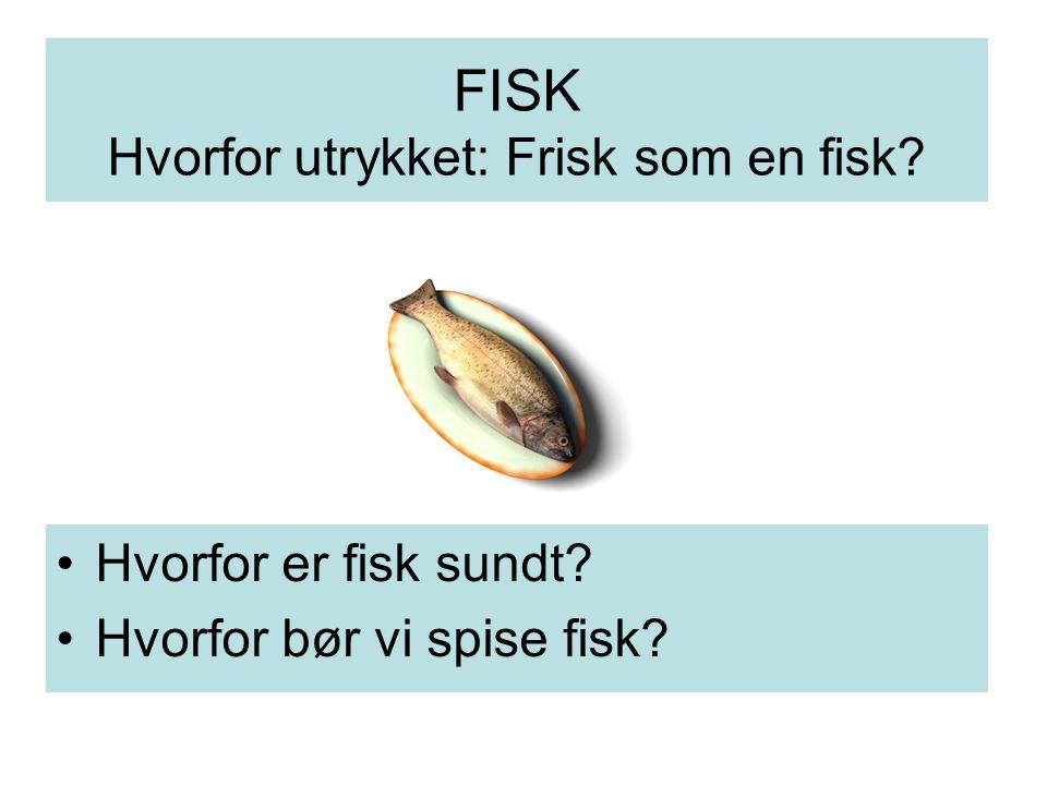 FISK Hvorfor utrykket: Frisk som en fisk? Hvorfor er fisk sundt? Hvorfor bør vi spise fisk?