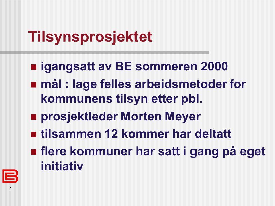 3 Tilsynsprosjektet igangsatt av BE sommeren 2000 mål : lage felles arbeidsmetoder for kommunens tilsyn etter pbl. prosjektleder Morten Meyer tilsamme