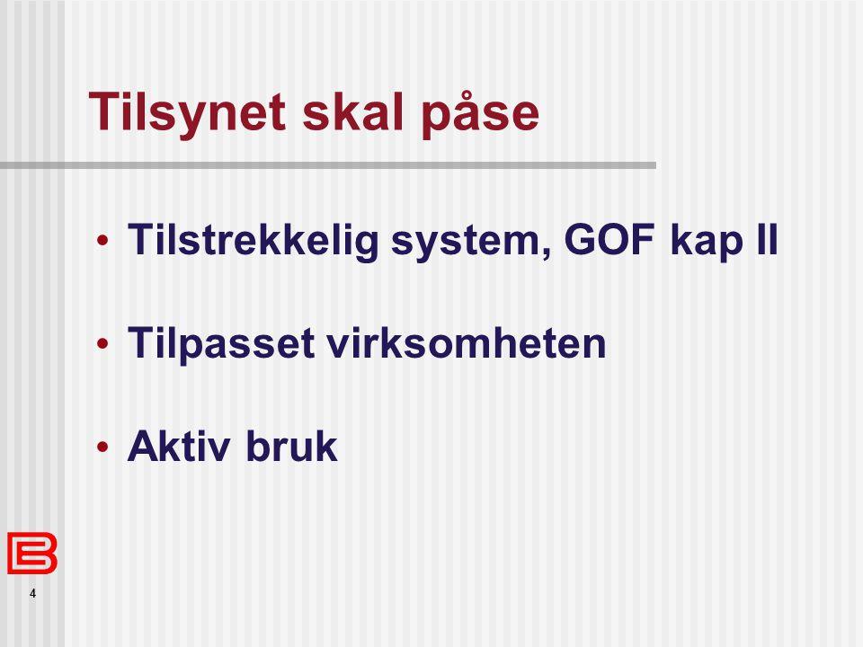 4 Tilsynet skal påse Tilstrekkelig system, GOF kap II Tilpasset virksomheten Aktiv bruk