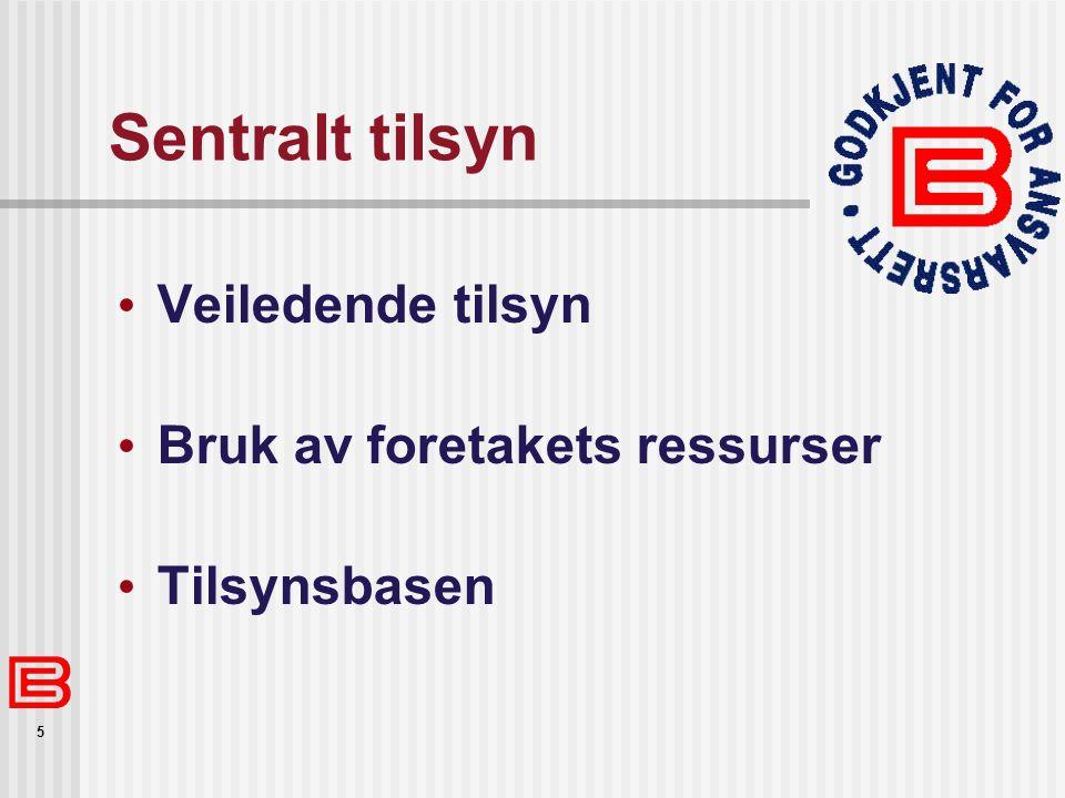 5 Sentralt tilsyn Veiledende tilsyn Bruk av foretakets ressurser Tilsynsbasen