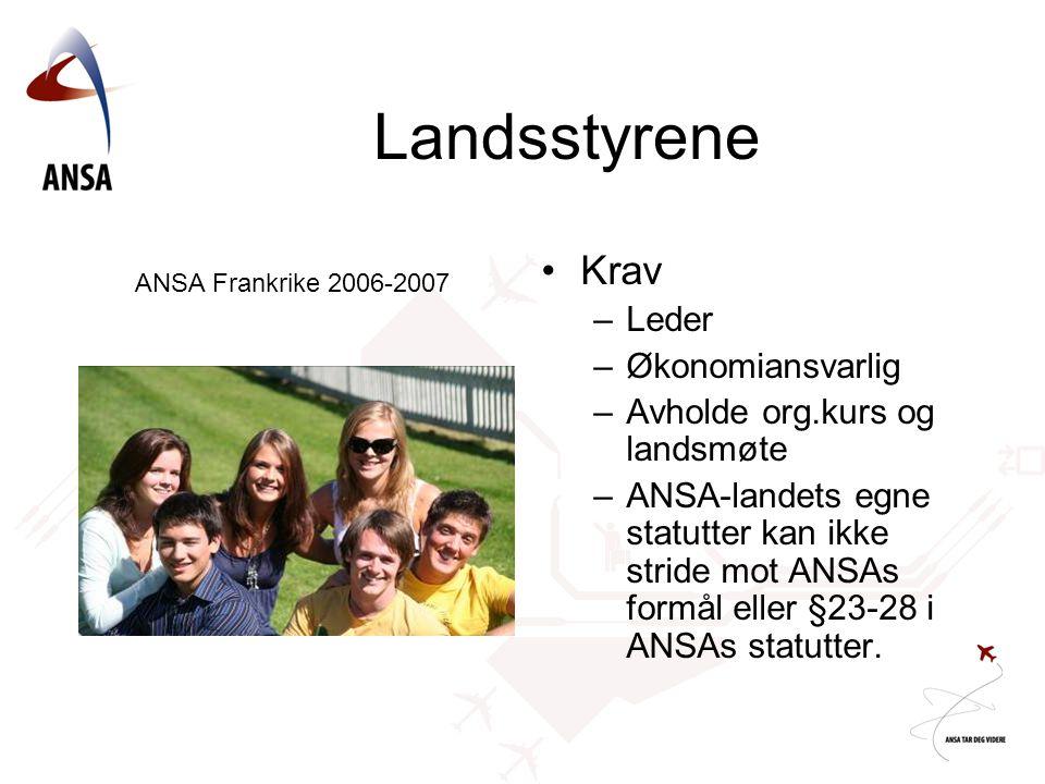 Landsstyrene Krav –Leder –Økonomiansvarlig –Avholde org.kurs og landsmøte –ANSA-landets egne statutter kan ikke stride mot ANSAs formål eller §23-28 i ANSAs statutter.