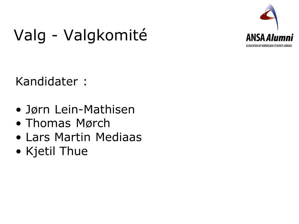Valg - Valgkomité Kandidater : Jørn Lein-Mathisen Thomas Mørch Lars Martin Mediaas Kjetil Thue
