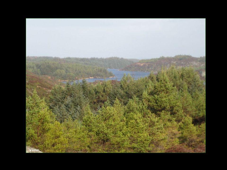 Vakre våtområder i nærheten av Rossafjellet
