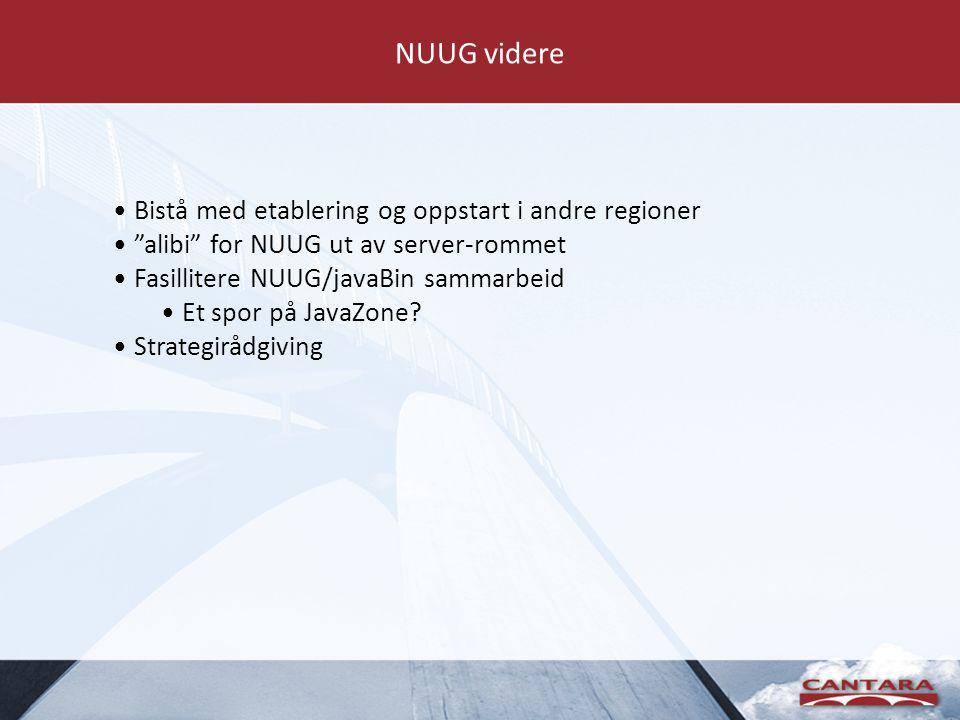 NUUG videre Bistå med etablering og oppstart i andre regioner alibi for NUUG ut av server-rommet Fasillitere NUUG/javaBin sammarbeid Et spor på JavaZone.