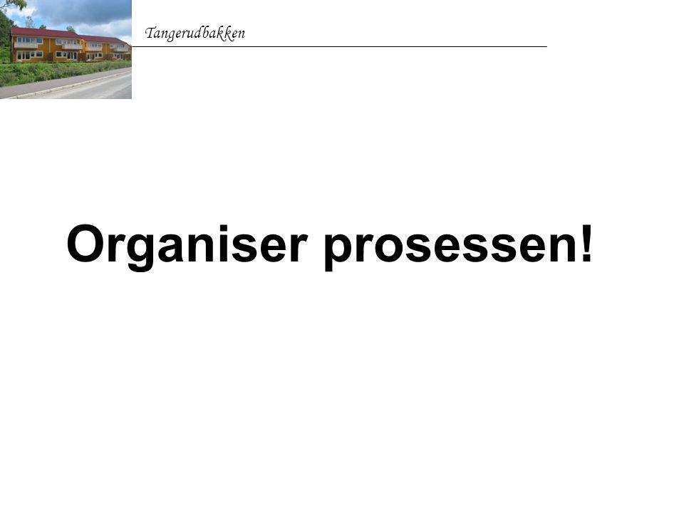 Organiser prosessen! Tangerudbakken