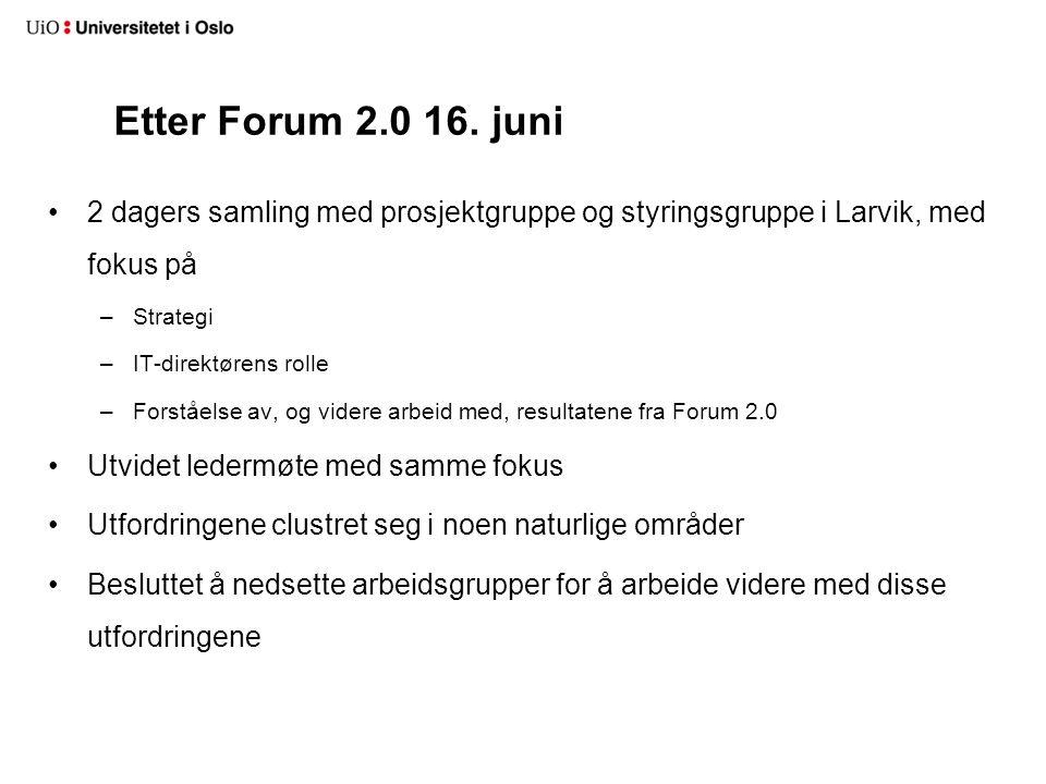 Etter Forum 2.0 16. juni 2 dagers samling med prosjektgruppe og styringsgruppe i Larvik, med fokus på –Strategi –IT-direktørens rolle –Forståelse av,
