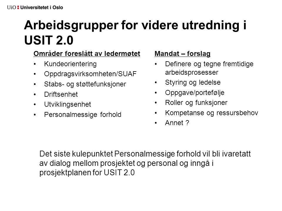 Arbeidsgrupper for videre utredning i USIT 2.0 Områder foreslått av ledermøtet Kundeorientering Oppdragsvirksomheten/SUAF Stabs- og støttefunksjoner D
