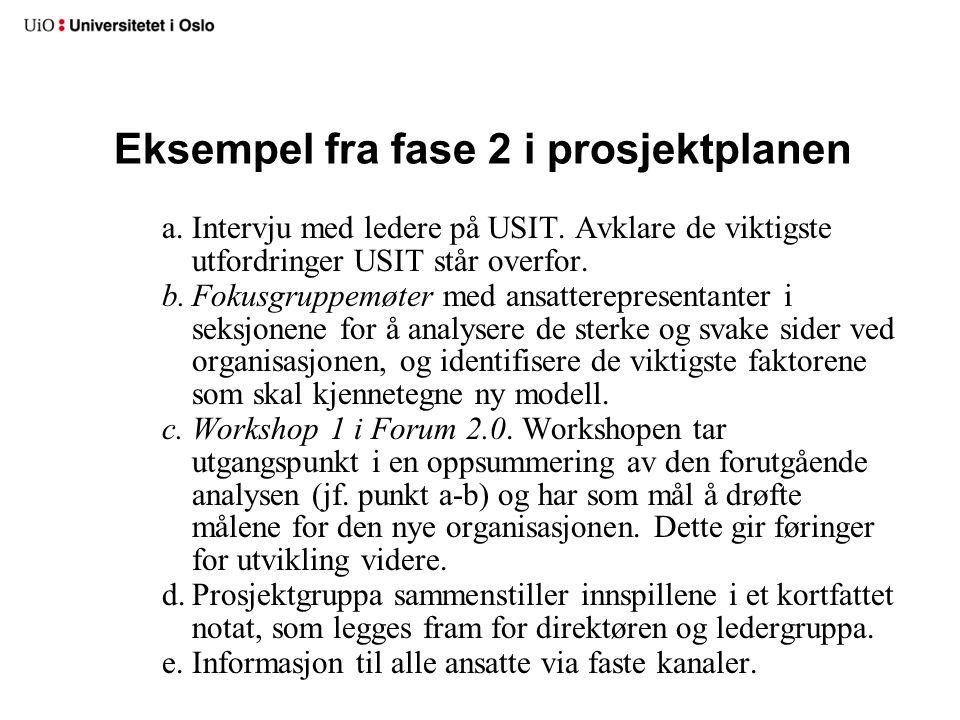Eksempel fra fase 2 i prosjektplanen a.Intervju med ledere på USIT. Avklare de viktigste utfordringer USIT står overfor. b.Fokusgruppemøter med ansatt