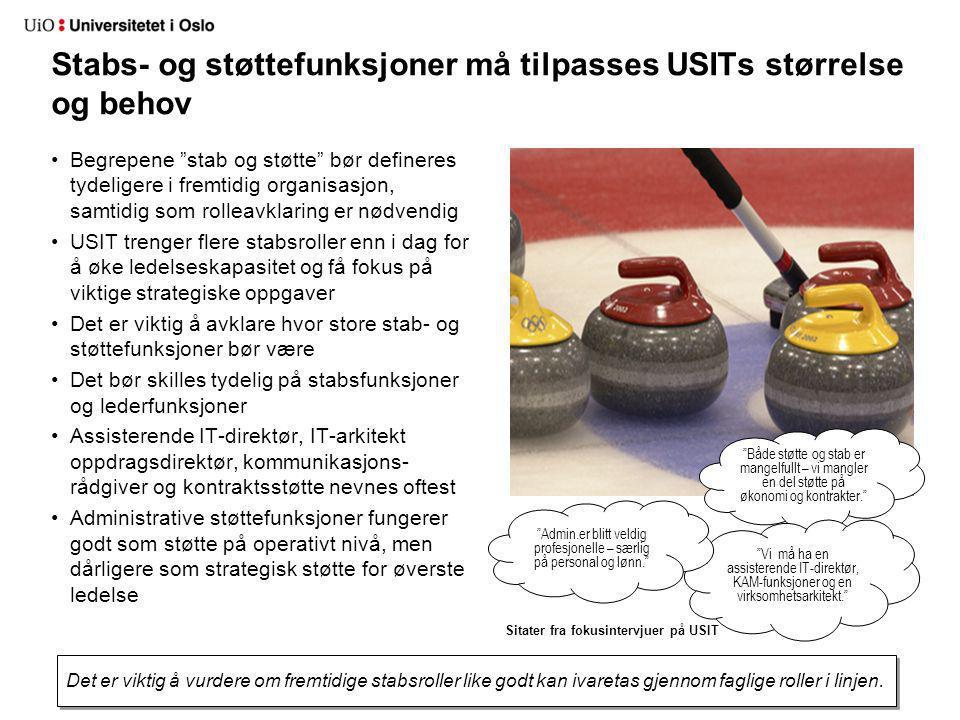 """Stabs- og støttefunksjoner må tilpasses USITs størrelse og behov Begrepene """"stab og støtte"""" bør defineres tydeligere i fremtidig organisasjon, samtidi"""