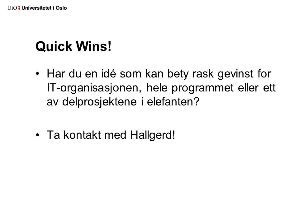 Quick Wins.