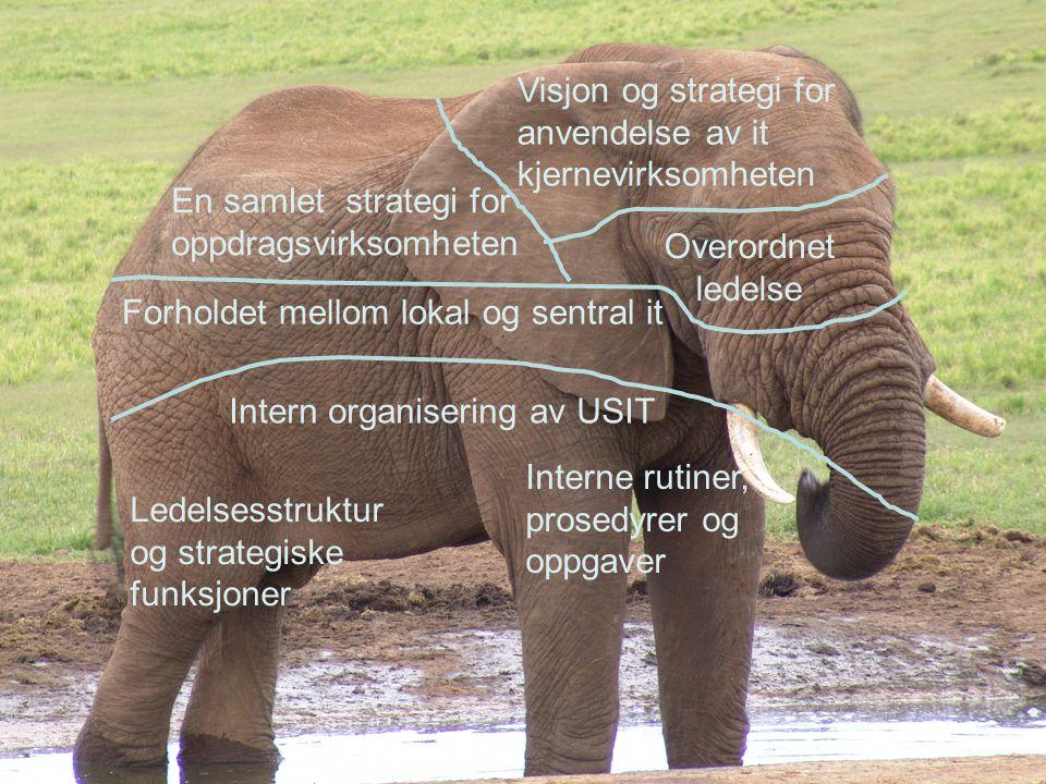 Overordnet ledelse En samlet strategi for oppdragsvirksomheten Visjon og strategi for anvendelse av it kjernevirksomheten Forholdet mellom lokal og sentral it Ledelsesstruktur og strategiske funksjoner Intern organisering av USIT Interne rutiner, prosedyrer og oppgaver