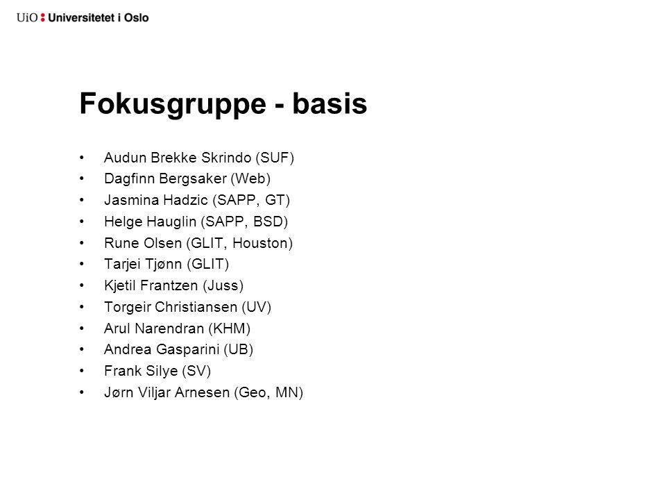 Fokusgruppe - basis Audun Brekke Skrindo (SUF) Dagfinn Bergsaker (Web) Jasmina Hadzic (SAPP, GT) Helge Hauglin (SAPP, BSD) Rune Olsen (GLIT, Houston)