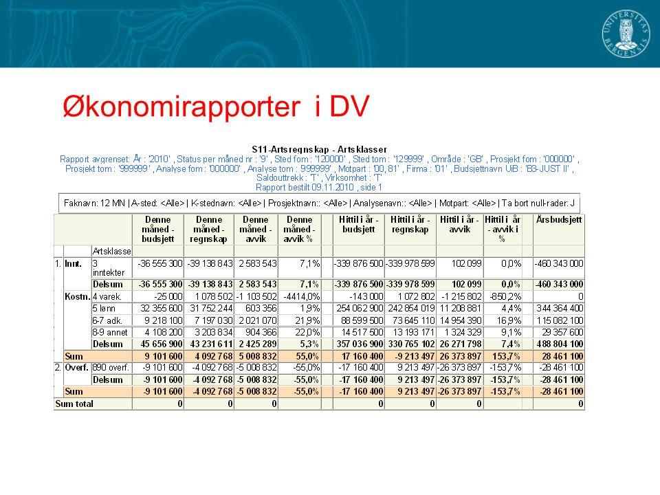 Analysemuligheter i DV Tidsserier over flere år