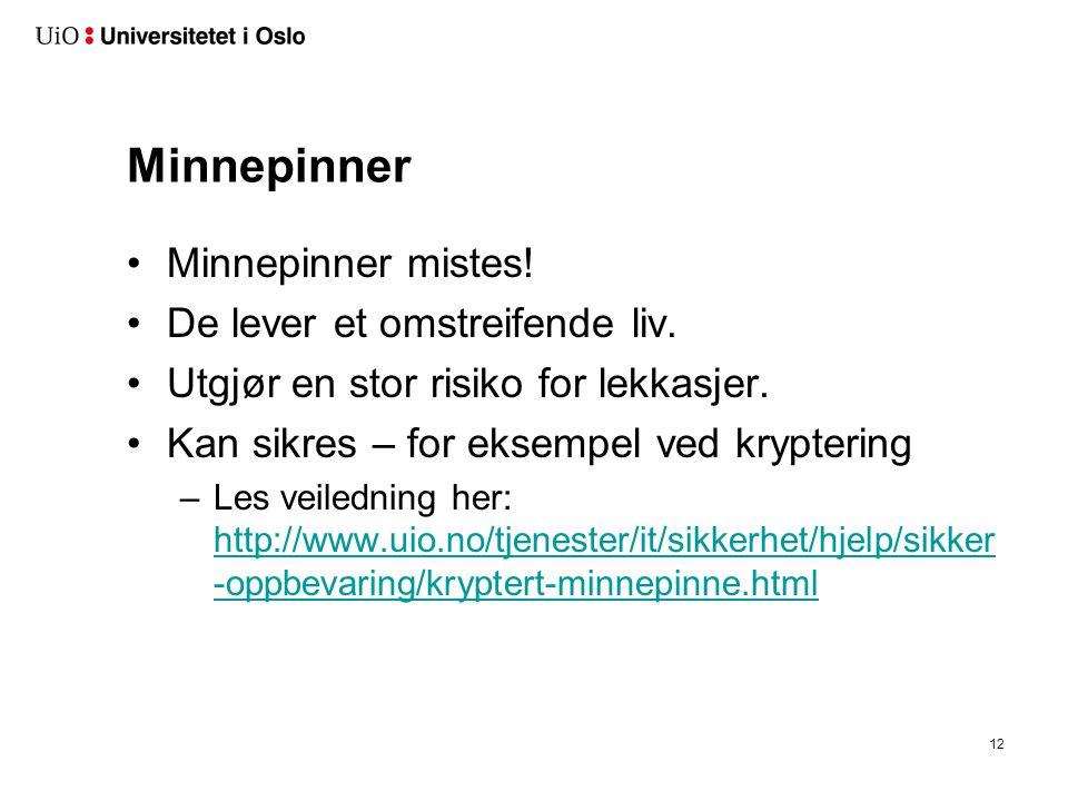 Minnepinner Minnepinner mistes! De lever et omstreifende liv. Utgjør en stor risiko for lekkasjer. Kan sikres – for eksempel ved kryptering –Les veile