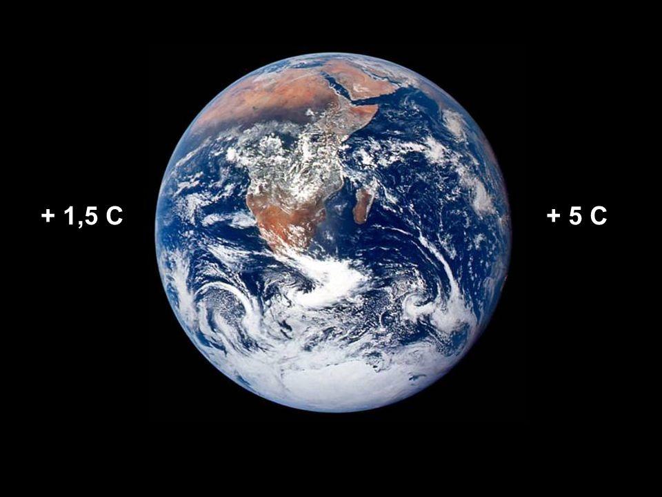 Globale konsekvenser Mer ekstremt vær Mer tørke Flere hetebølger Økt spredning av sykdommer 20 – 30 % av jordas arter står i fare for å bli utrydda innen 2050