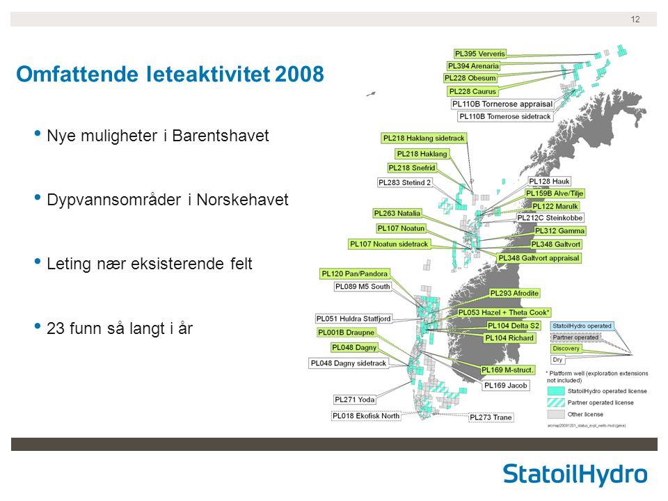 12 Nye muligheter i Barentshavet Dypvannsområder i Norskehavet Leting nær eksisterende felt 23 funn så langt i år Omfattende leteaktivitet 2008