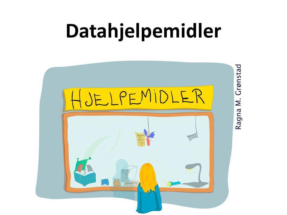 Datahjelpemidler