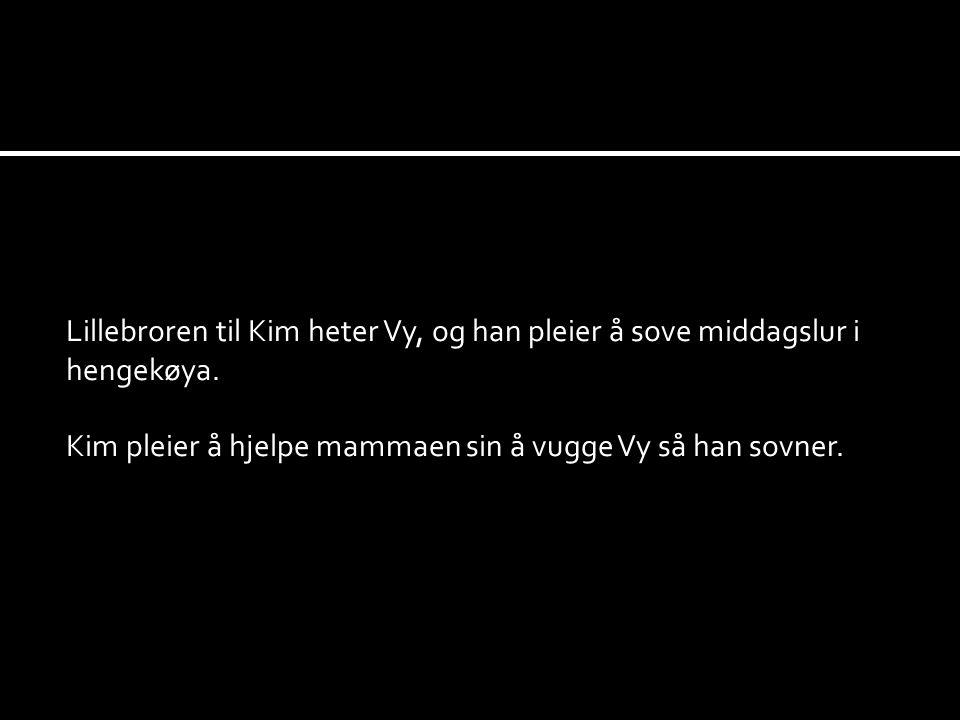 Lillebroren til Kim heter Vy, og han pleier å sove middagslur i hengekøya. Kim pleier å hjelpe mammaen sin å vugge Vy så han sovner.