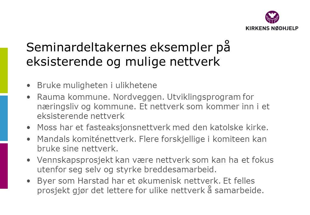 Seminardeltakernes eksempler på eksisterende og mulige nettverk Bruke muligheten i ulikhetene Rauma kommune.