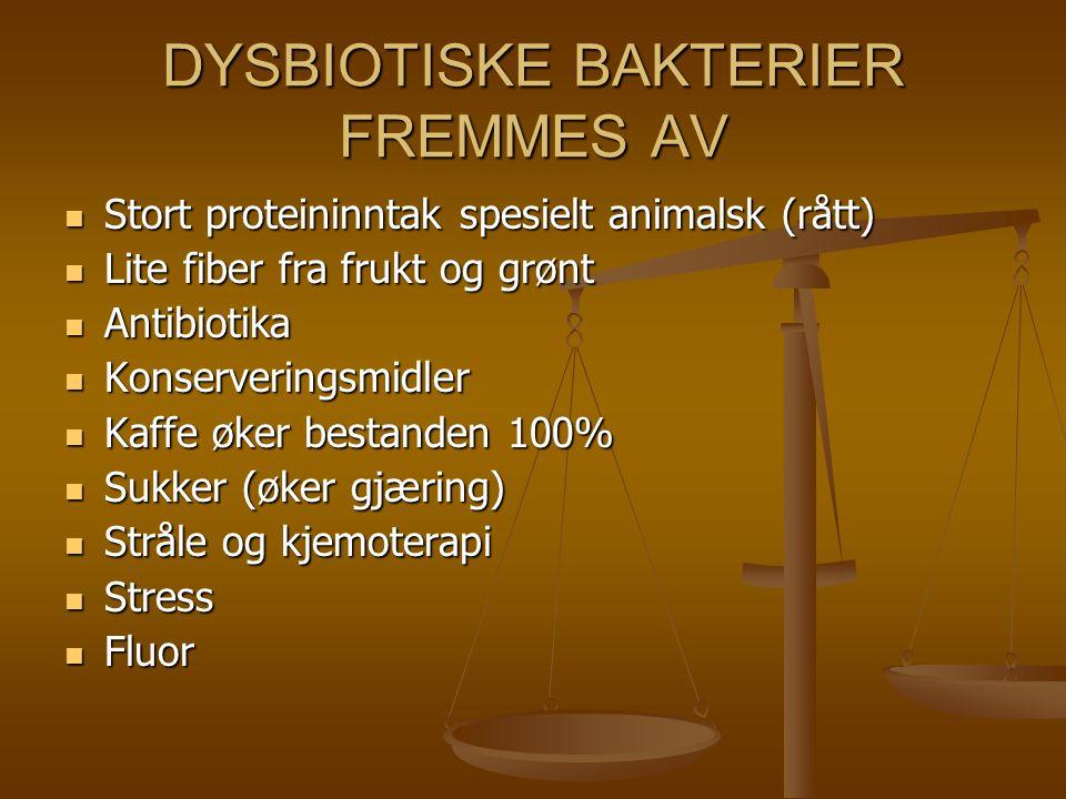 DYSBIOTISKE BAKTERIER FREMMES AV Stort proteininntak spesielt animalsk (rått) Stort proteininntak spesielt animalsk (rått) Lite fiber fra frukt og grø
