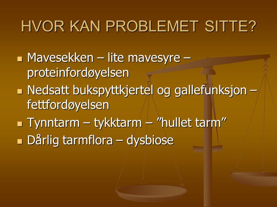 HVOR KAN PROBLEMET SITTE? Mavesekken – lite mavesyre – proteinfordøyelsen Mavesekken – lite mavesyre – proteinfordøyelsen Nedsatt bukspyttkjertel og g
