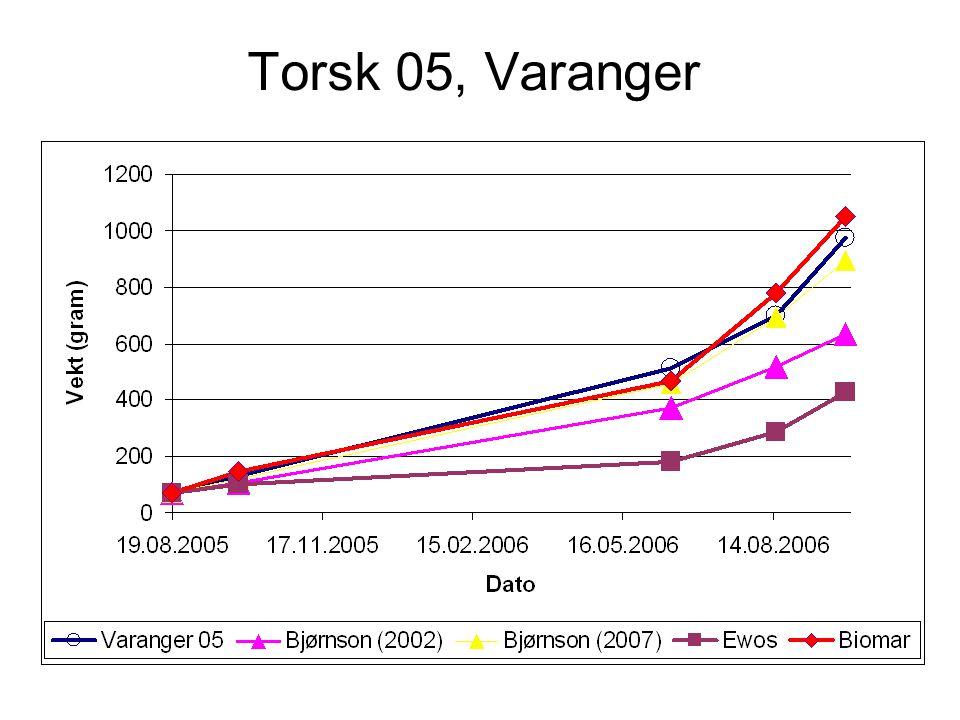 Torsk 06, Varanger