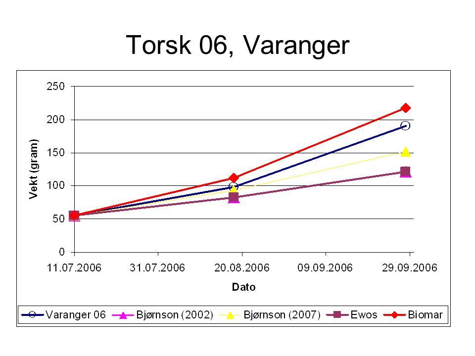 Torsk 06, Laksefjord