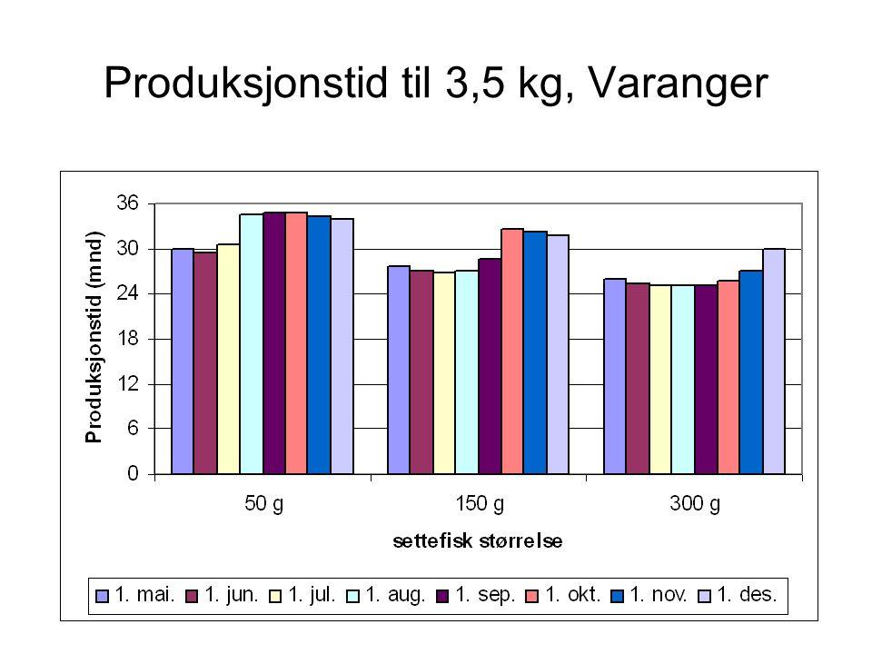 Produksjonstid til 3,5 kg, Laksefjord