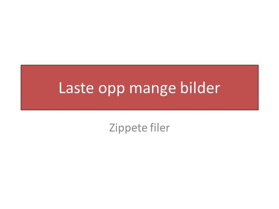 Laste opp mange bilder Zippete filer