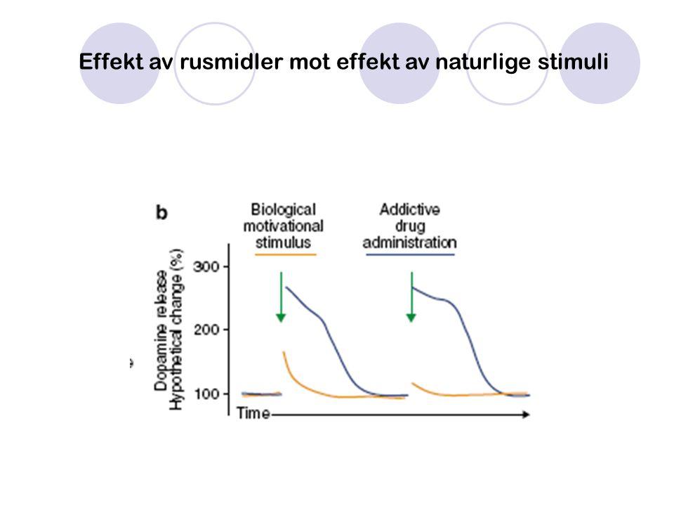 Effekt av rusmidler mot effekt av naturlige stimuli