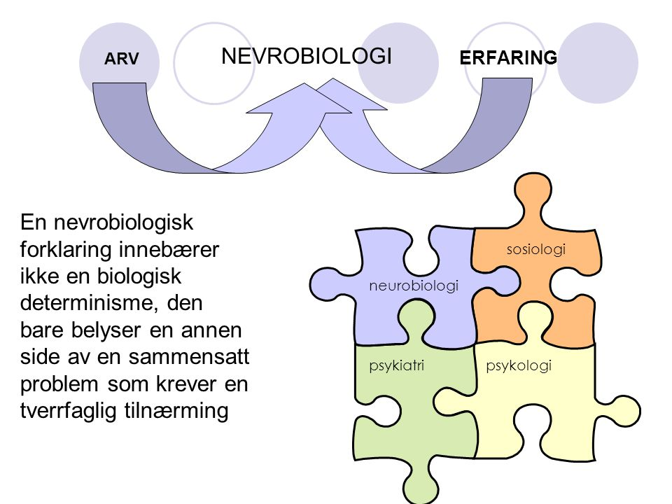 ERFARING NEVROBIOLOGI neurobiologi sosiologi psykiatripsykologi En nevrobiologisk forklaring innebærer ikke en biologisk determinisme, den bare belyse