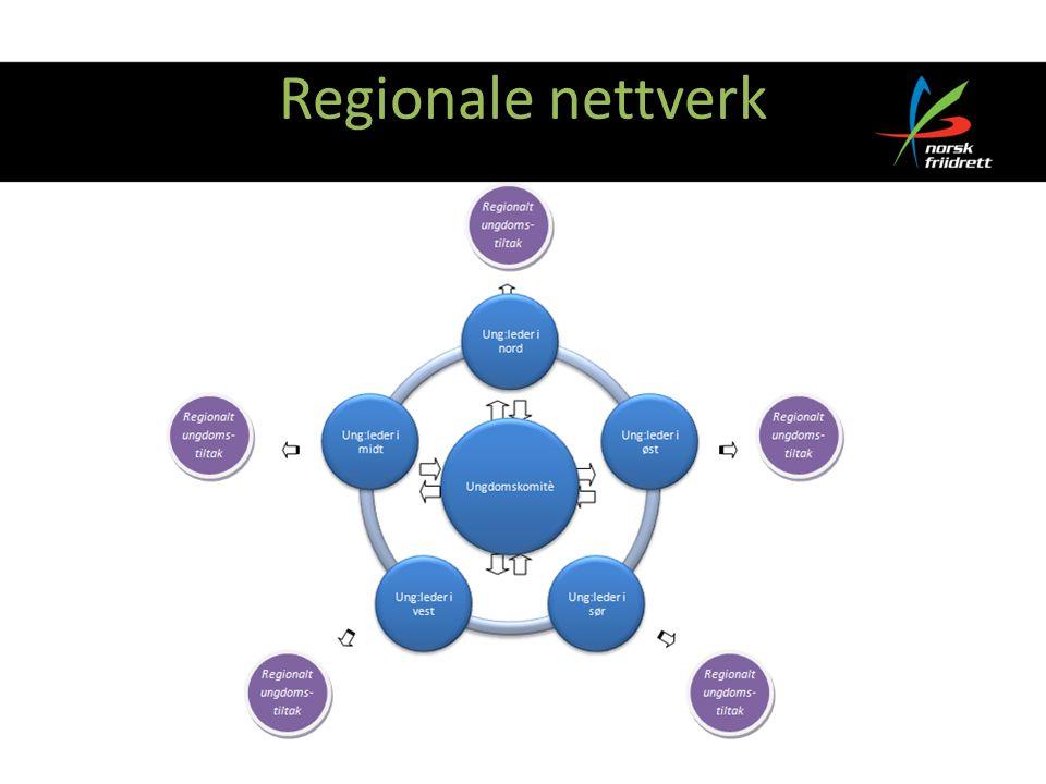 Regionale nettverk