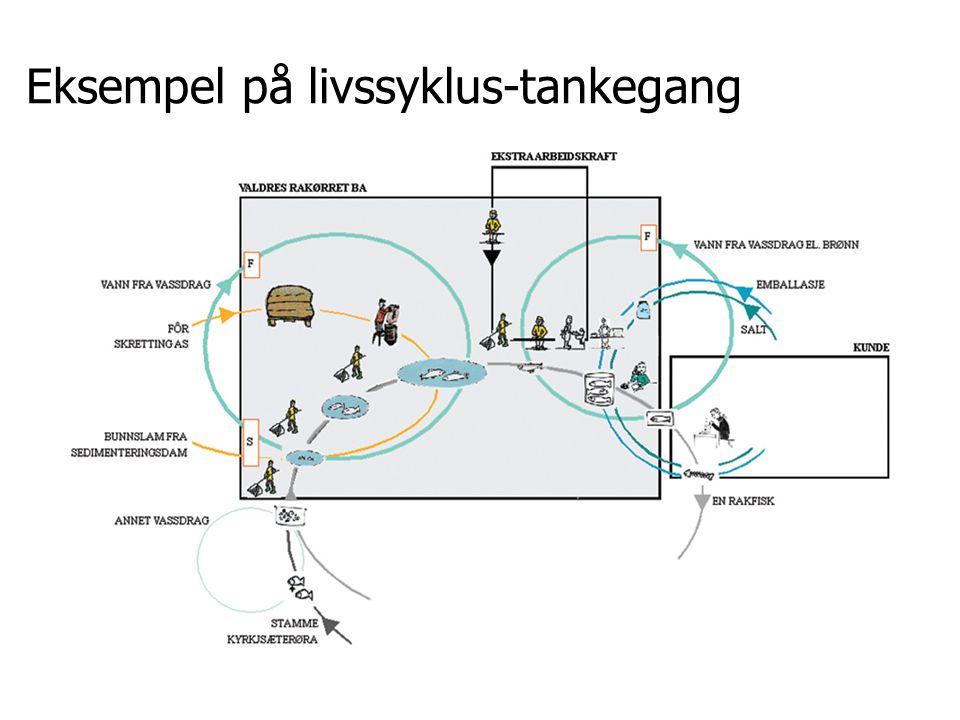 UNEP-rapporten Ecodesign means that 'the environment' helps to define the direction of design decisions (s37) Designprosessen: Aktiviteter og beslutninger Optimalisering –økonomi –estetikk –funksjon –miljø Har designere et etisk ansvar?