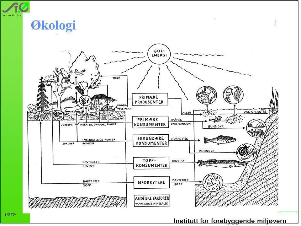 Institutt for forebyggende miljøvern  STØ Økologi