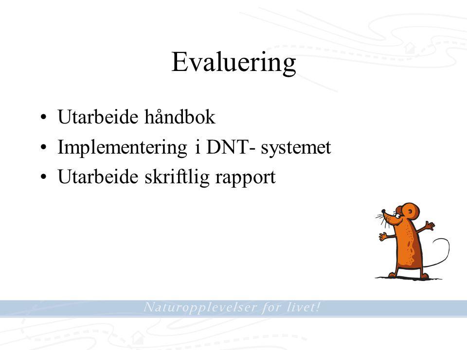 Evaluering Utarbeide håndbok Implementering i DNT- systemet Utarbeide skriftlig rapport