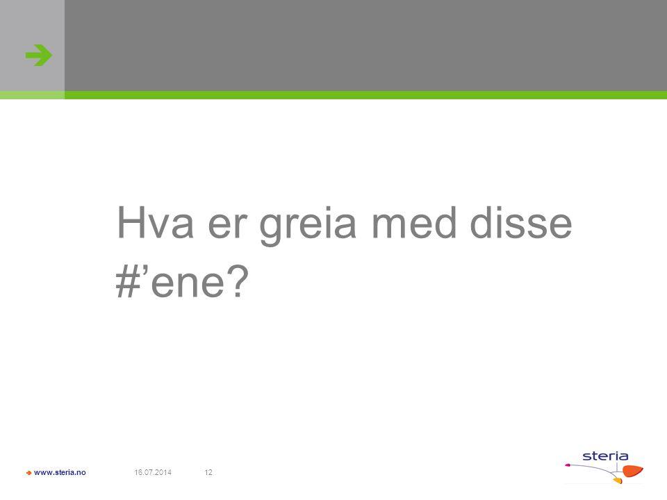   www.steria.no 16.07.201412 Hva er greia med disse #'ene?