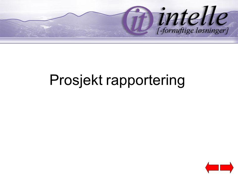 Prosjekt rapportering