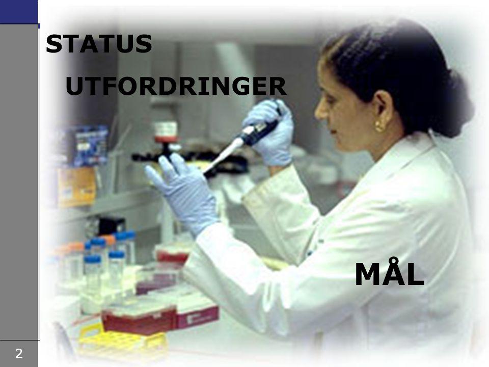 2 STATUS UTFORDRINGER MÅL